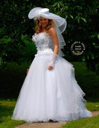 Bröllopsklänning och den vackra bruden