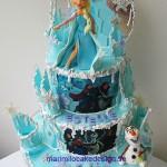 frozen-cake-25