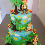 jake pirates cake