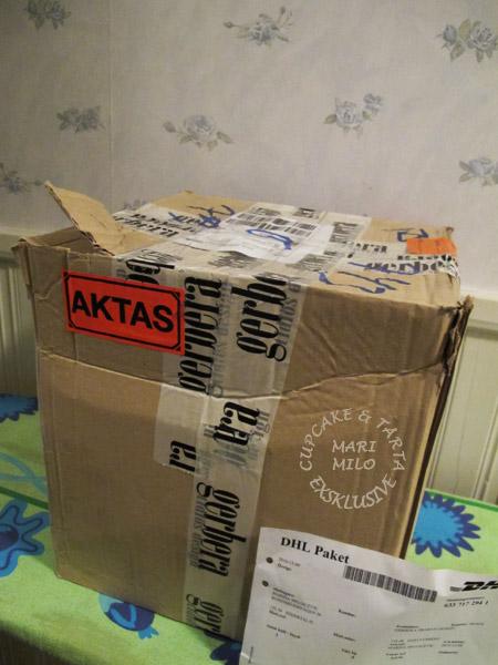 Gerbera paket