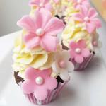 baby-rossa-mini-cupcakes
