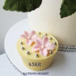 glutenfri-dessert-45kr