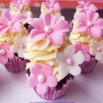 rosa-mini-cupcakes