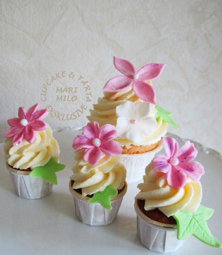 Cupcakes och mini cupcakes