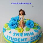 student-2013-tarta