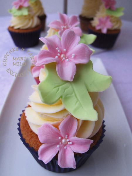 Dop cupcake sthlm