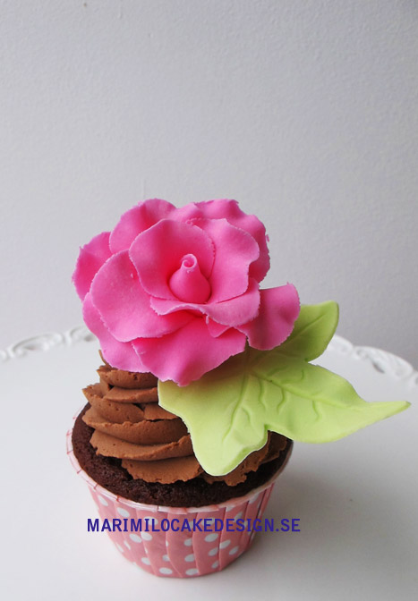 Cupcake, ros och choklad