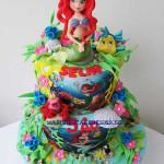 ariel-cake-16b
