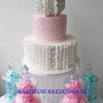 sugarpaste-cake